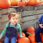 October update: the move, The Monti, the Monga and the 18-month-old